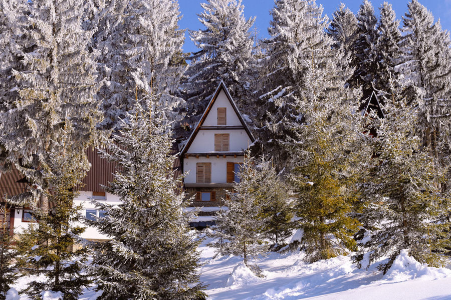 Bosnia And Herzegovina Canon Close-up Cottage Cottage Life Cottages Mountain Mountains Outdoors Snow Snow Day Snowing Vlasic First Eyeem Photo