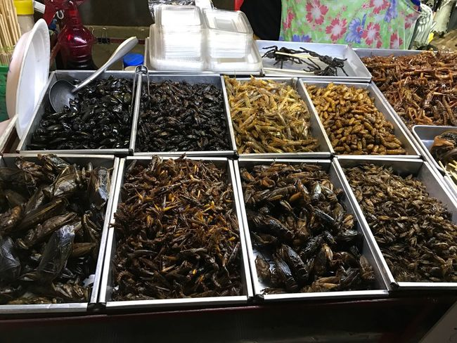 Visual Feast Night Market In Thailand Exotic Foods