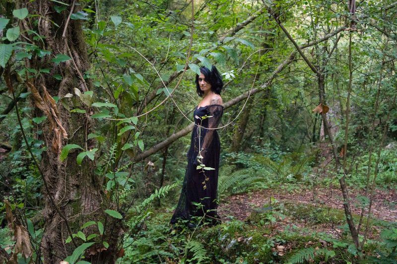 Black Dress Branch Brunette Forest Gothic Trees Woman Woman Portrait