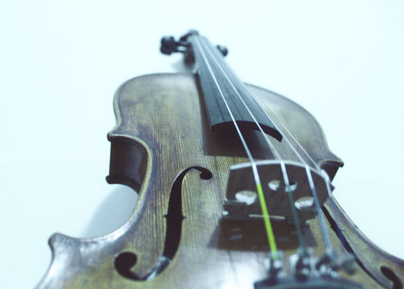 Violin details Classical Music Curl Music String The Week On EyeEm Wood Arts Culture And Entertainment Classical Music Close-up Day Detail Indoors  Instrument Music Musical Instrument Musical Instrument String Musician No People Violin Violin Curl Violin Strings Violinist Weapon White Background Wood - Material