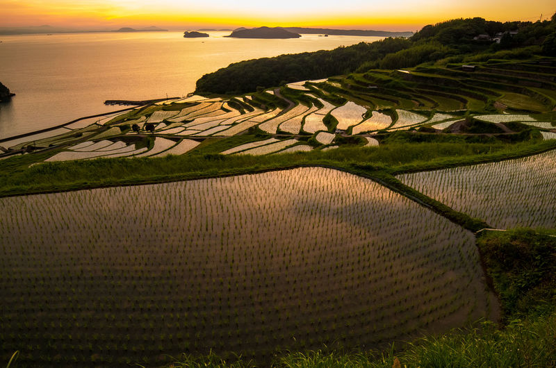 Scenic View Of Doya Rice Terrace Against Sky During Sunset