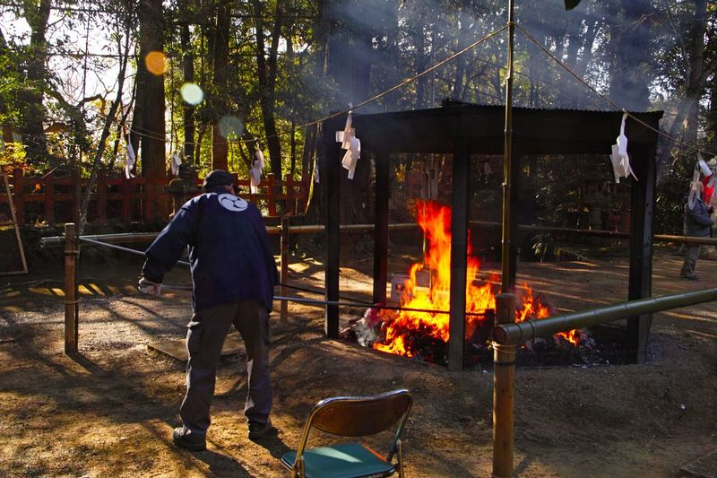 Rear view of man standing by bonfire against trees