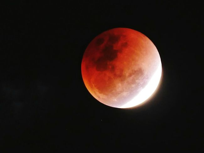 Blood moon Moon Night Astronomy Full Moon Beauty In Nature Moon Surface Scenics Eclipse Nature Planetary Moon Outdoors No People Sky Tranquility Clear Sky Red Half Moon Space Crescent Close-up