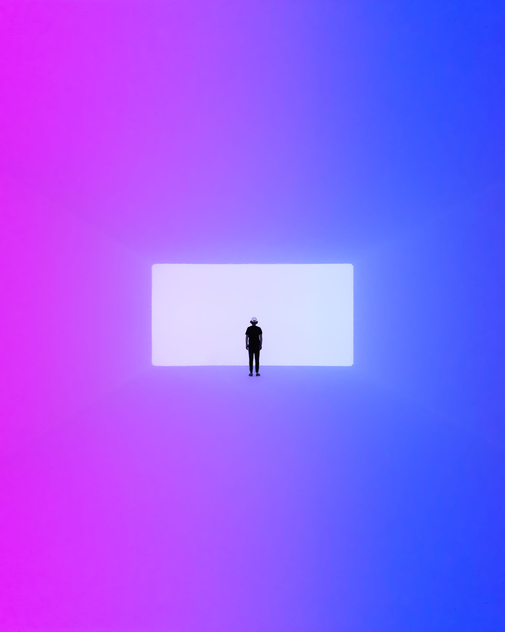 one person, blue, copy space, indoors, day, nature, sign, colored background, cut out, studio shot, communication, architecture, pink color, animal wildlife, purple