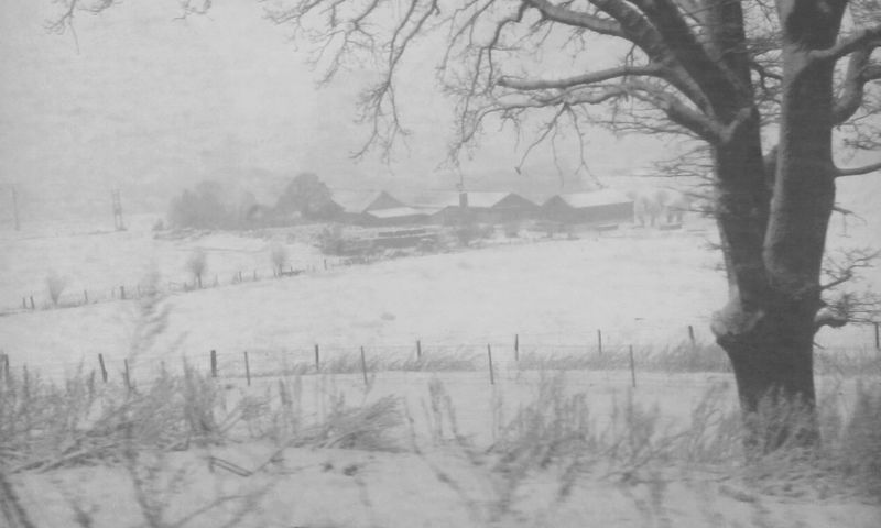 Houses In The Middle Of Nowhere Blackandwhite Nature Taking Over Blizzard ALL WHITE EVERYTHING Luxembourg