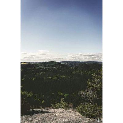 Saxon Switzerland Landscape Saxonswitzerland View Beautofulview Michaellangerfotografie Landscape Landscape_lovers Landscapephotography Landscapephotographer Landscapephoto Earthshoot CripixtMovement Rcnocrop Fotografie Photography Photographyislife