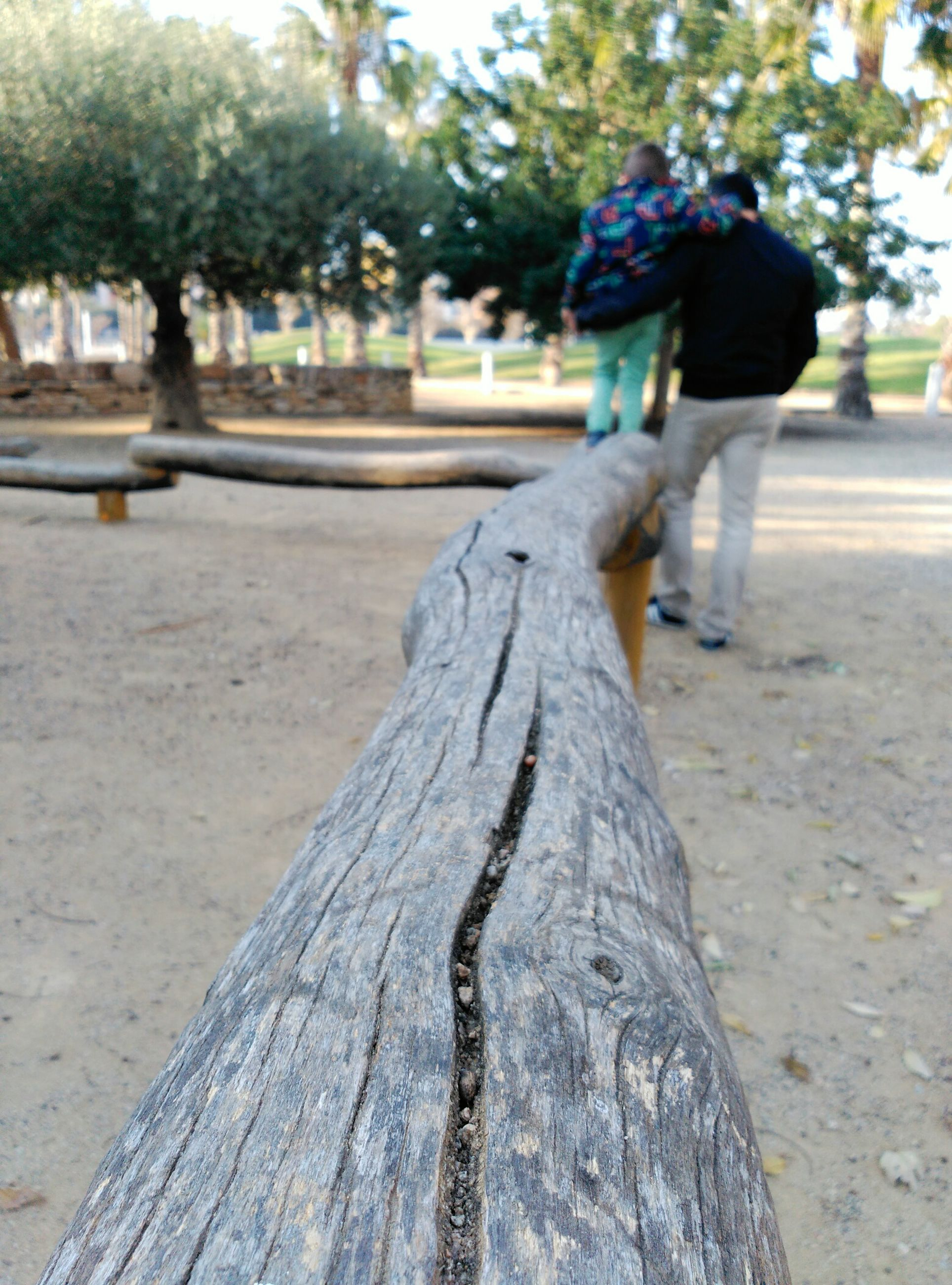 rear view, focus on foreground, lifestyles, street, walking, full length, leisure activity, casual clothing, tree, person, incidental people, outdoors, road, day, men, sidewalk, tree trunk, childhood