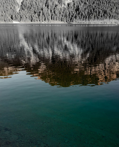 Reflections Water Beauty In Nature Tranquility Waterfront Tranquil Scene Lake Reflection No People Scenics - Nature Nature Day Tree Plant Non-urban Scene Outdoors Idyllic Travel Destinations Land Environment Reflection Lake