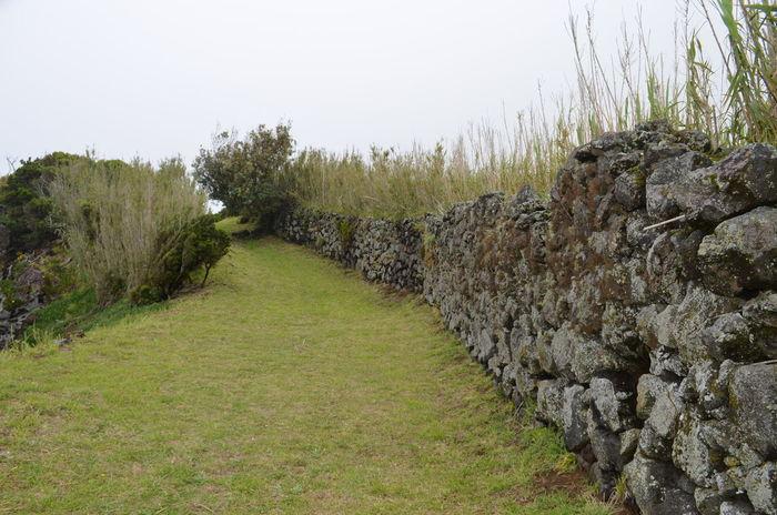 Azores Açores Faial Faial Island Fog Hiking Scenics Stone Wall Trekking
