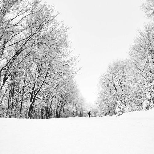 Streetphoto_bw Bw_collection Blackandwhite AMPt Community Snow ❄ EyeEm Best Shots - Black + White