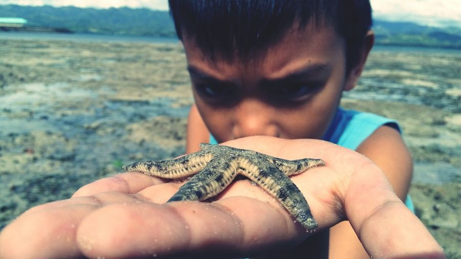 One Animal One Person Holding Animal Themes Outdoors Real People People Day Human Hand Portrait Sea Human Body Part Beach Vacations Young Adult Close-up Reptile Adults Only Animals In The Wild Adult Water Unusual Unique Adventure Nature EyeEmNewHere Uniqueness Miles Away Lieblingsteil
