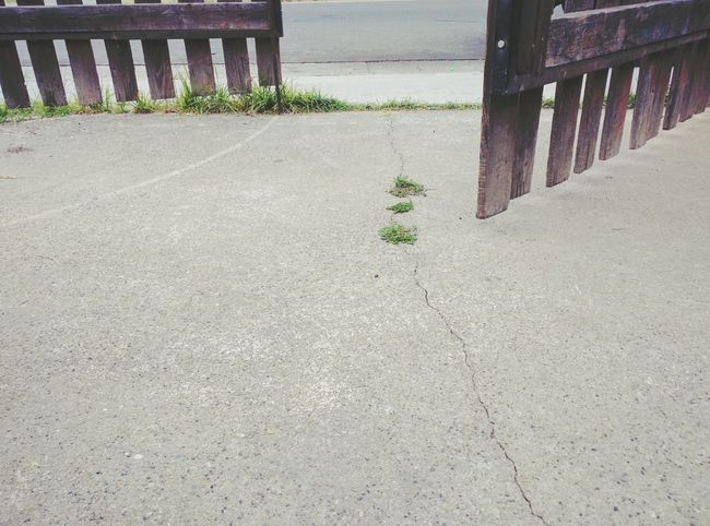 Fence Rustic Fence Entrance Open Gate Cracked Concrete Patch Of Grass Grass Growing From Concrete Crack Low Hue Inviting Road Outside My Door Afuera Low Color Feeling Empty