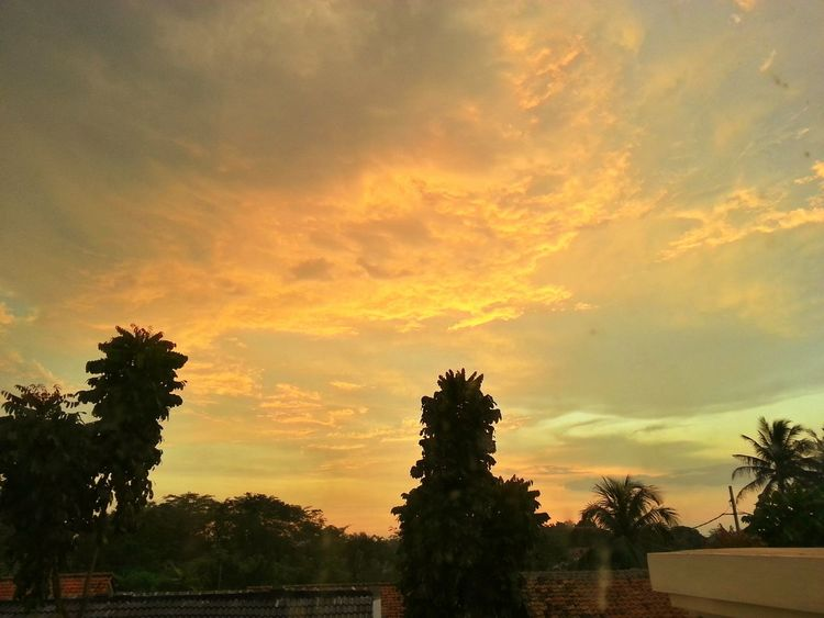 Open Edit Sunset Sunset_collection