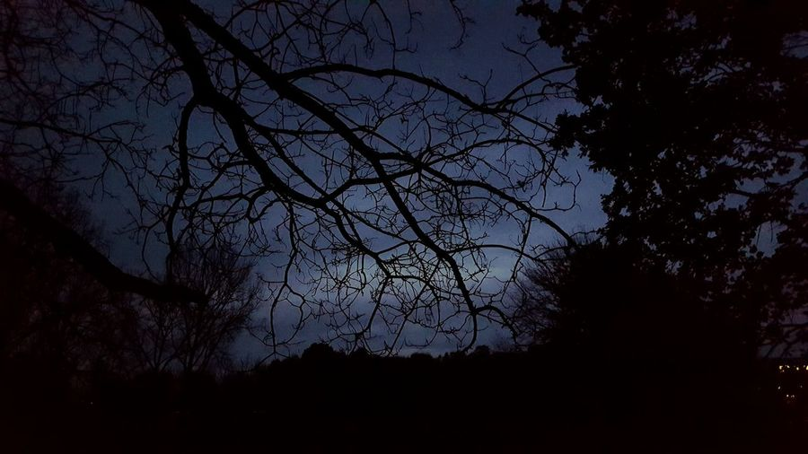 Deutschland Nature Night No People Winter Galaxy Abend Sky EyeEm