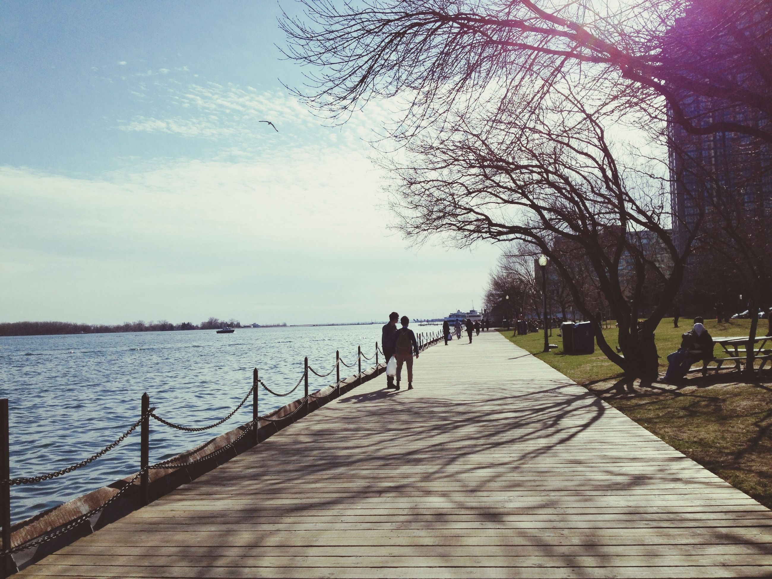 the way forward, rear view, water, full length, tree, walking, lifestyles, men, leisure activity, sky, diminishing perspective, person, railing, walkway, footpath, tranquility, boardwalk, tranquil scene
