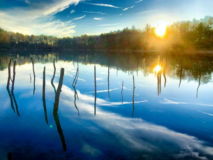 Sticks and branches sticking out of the water of a lake in a forest under a blue sky with a setting or rising sun, all reflected on the surface of the water Reflection Tranquility Water Tranquil Scene Beauty In Nature Scenics - Nature Lake Tree Sky Nature Plant Cloud - Sky No People Winter Cold Temperature Idyllic Non-urban Scene Frozen Reflection Lake
