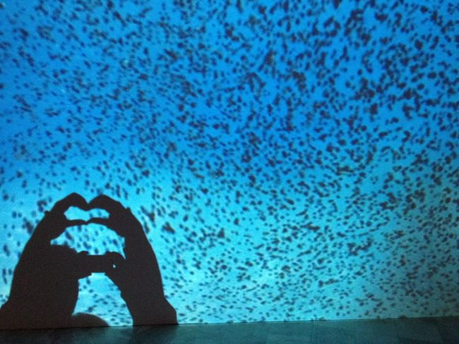Show Me Your Hand The Purist (no Edit, No Filter) Reflection Art Creative Light And Shadow @ museum of modern art in Thessaloniki Greece