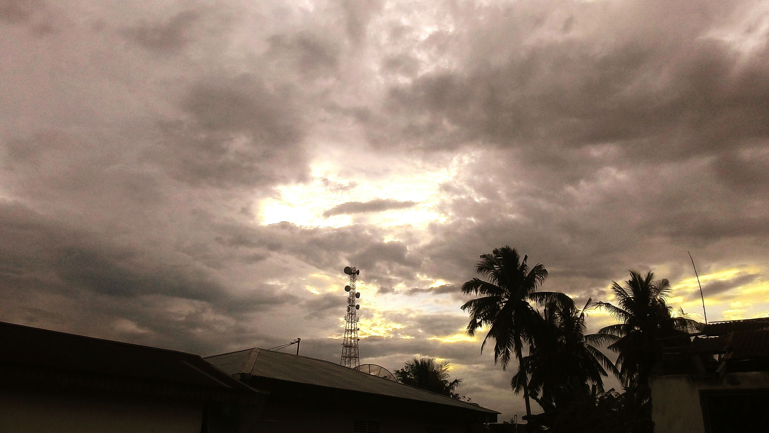 sunset, sky, cloud - sky, silhouette, tree, dramatic sky, nature, beauty in nature, palm tree, no people, outdoors, scenics, storm cloud, day