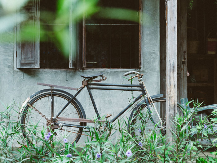 Bicycle by window of old abandoned building