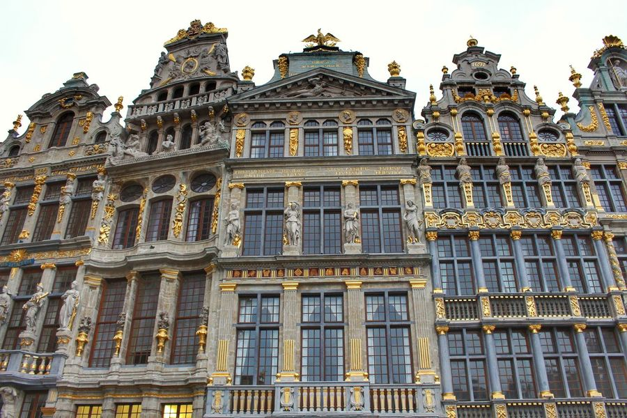 Belgium Brussels Gold Grand Place Bruxelles Historical Building Sightseeing Square Travel Architecture Building Exterior Built Structure Day Façade Golden Decoration History Landmark Low Angle View No People Outdoors Photo Spot Sky Tourism Tourist Destination Travel Destinations Windows