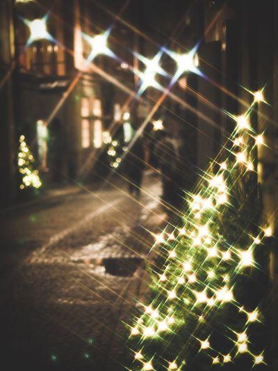 Street Light Star Filter Christmas Tree Spider Web Focus On Foreground No People Outdoors Close-up Spider Night Pattern Illuminated