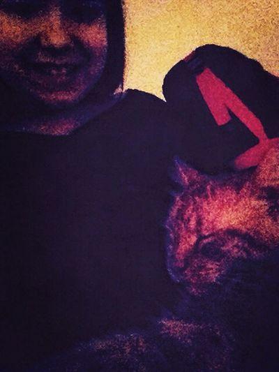 Cat♡ Going To Sleep ♡ Bye Bye Goodnight ♡