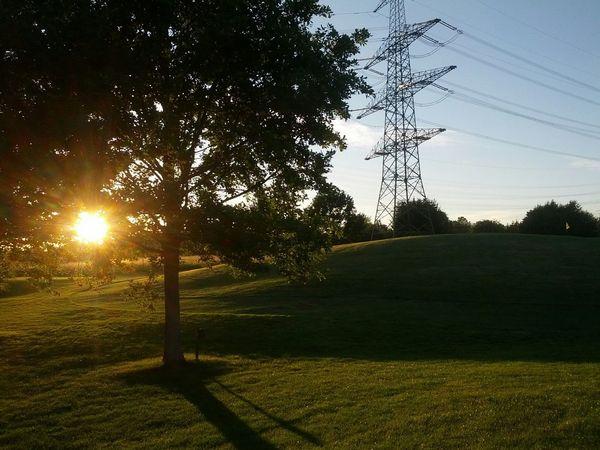 Golfing Sunrise Sun Nature EyeEm Nature Lover Tree Golf ⛳ Golfcourse