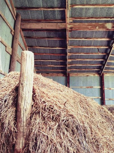 Farm Building Day No People Outdoors Architecture Old And Tired Straw Tin Roof Abandoned Seen Better Days