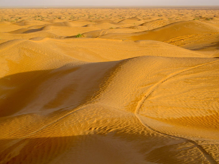 Tunisia travel holidays Land Landscape Desert Scenics - Nature Sand Sand Dune Environment Climate Arid Climate Tranquility Nature No People Tranquil Scene Remote Non-urban Scene Day Beauty In Nature Pattern Barren Outdoors Semi-arid