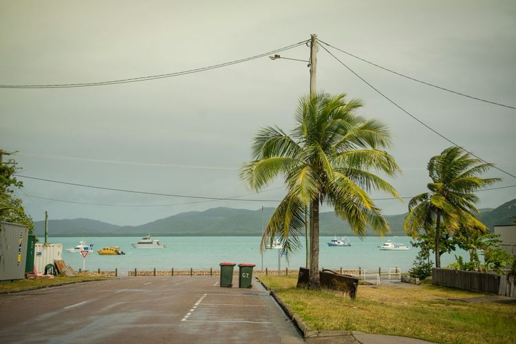 Thursday Island Australia & Travel Stillness In Time Way To Nowhere Everybodystreet By The Sea Tropical Climate On The Road Streetphoto_color The Places I've Been Today Travel Streetphotography Outdoors Mirrorless Urban Lifestyle My Eyes My Australia Street Photography Street Eye4photography  Tropical Paradise Landscape Landscapes With WhiteWall The KIOMI Collection My Eyes My Nature Landscapes