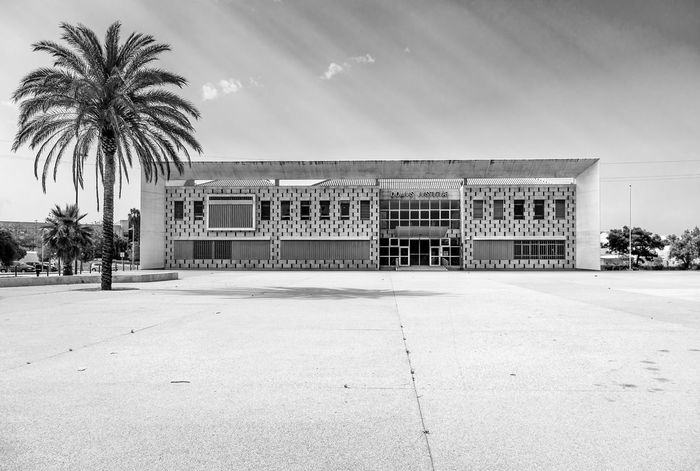 Portugal Architecture Building Exterior Building In Sunlight No People Official Building Palm Tree Silves