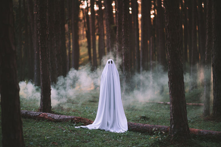 Portrait of woman wearing ghost costume in forest