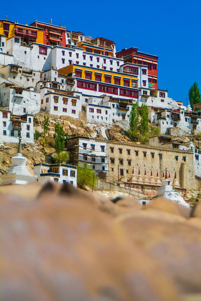 Thikse gompa or thikse monastery Architecture Historical Building India Leh Leh Ladakh.. Mountain Thiksey Travel Travel Destinations