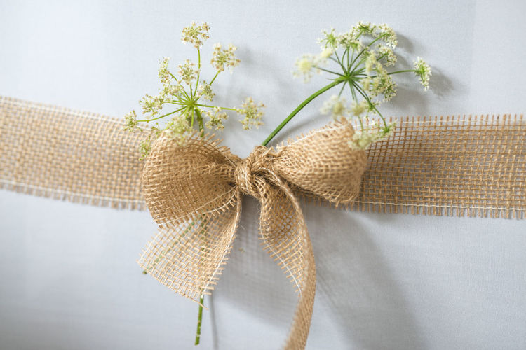 Bow Bright Close-up Decoration Flowers Plant Wedding White