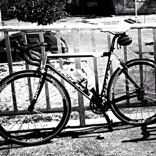My Bicycle Doing Sport Taking Photos