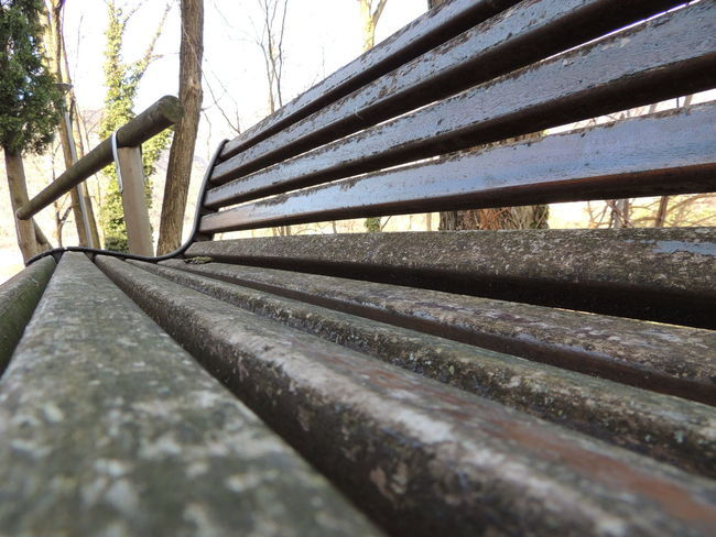 Bench Bench Bench Seat Benches Close-up Day Nature No People Outdoors Panchina Panchinavuota Panchine Wood - Material