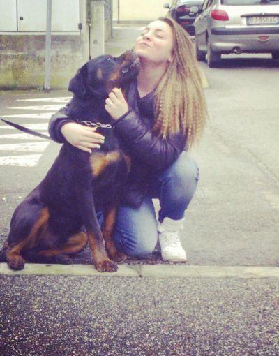 E poi boh.. sono follemente innamorata di te Akim ♥♥♥♥*-* Taking Photos Mydog ♥ { My Lovely RottWeiler } - ILoveYou.♡