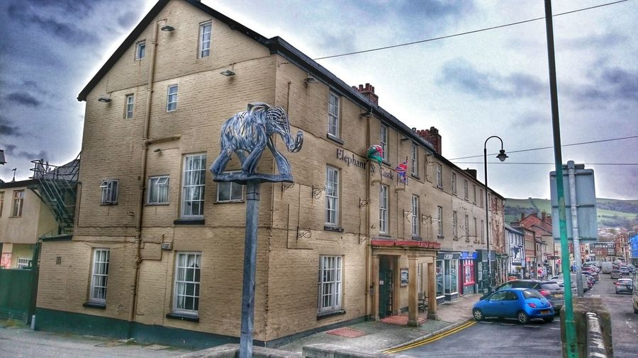 Metal Work Sculpture Elephant Art Twisted Metal Old Buildings Newtown Powys Sculptures Hotel View Main Street