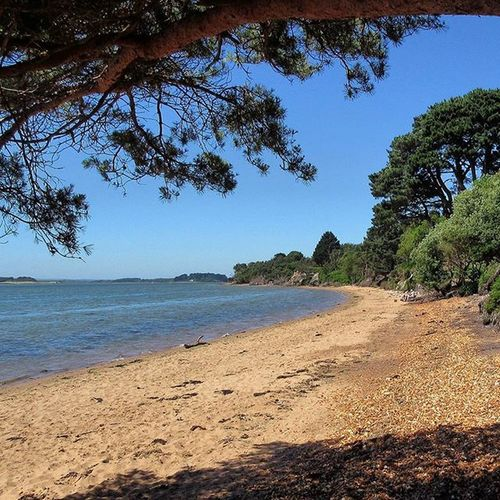 Dorset Brownseaisland Uk