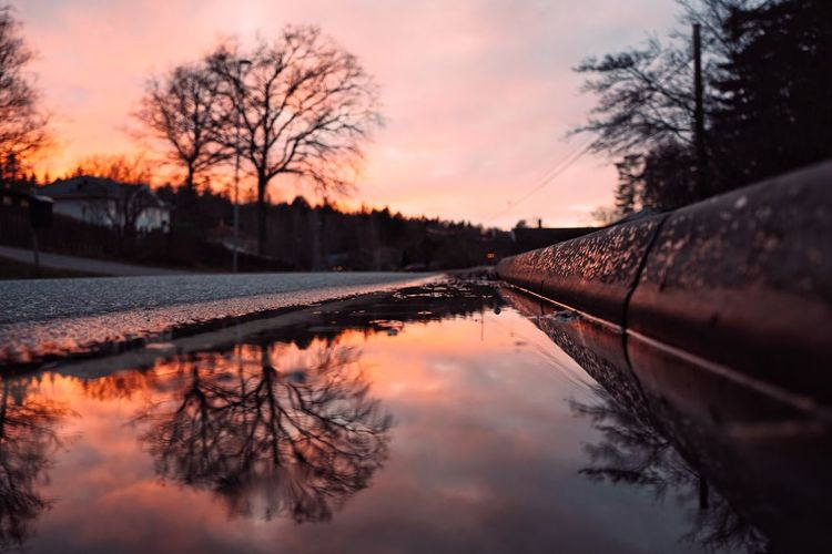 Reflection of bare trees in lake during sunset