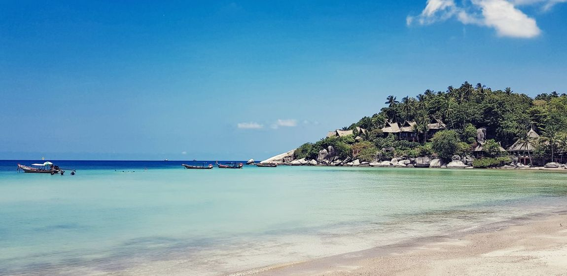 'Memory is the only paradise from which we cannot be driven...' Koh Tao Dream Place Vacation Holiday Paradise Island Water Tree Clear Sky Sea Beach Blue Sand Summer Swimming UnderSea Seascape Rocky Coastline Bay Of Water Palm Tree Lagoon Turquoise Colored Tropical Tree Coast