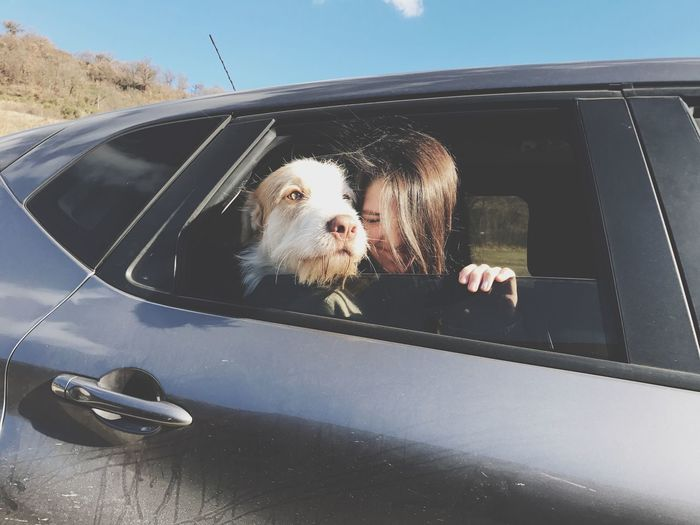 Traveling Home For The Holidays Pets Domestic Animals Mammal Animal Themes One Animal Dog Reflection Mode Of Transport Car No People Day Outdoors Side-view Mirror Close-up Sky Vehicle Mirror Cars
