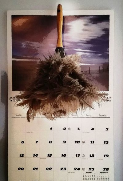 Check This Out EyeEm Best Shots December Calendar Cleaning Dusting Feathers Appointments Monthly