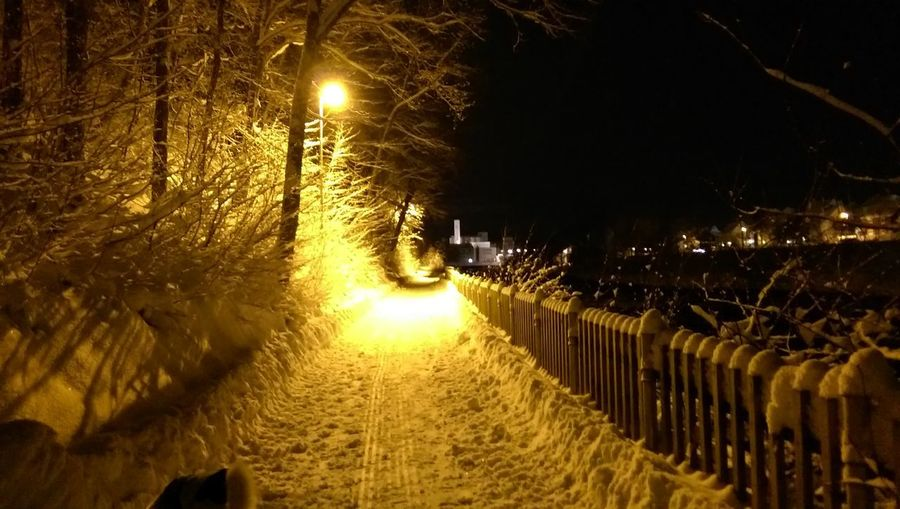 Night Tree Outdoors Snow Pathway Toward The River Street Light Churchtower No People Wintertime