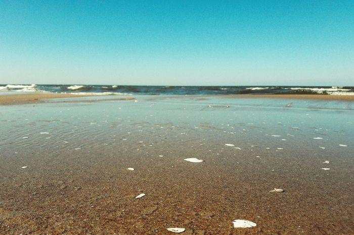 BeachPolish Seaside🌊 Water Sea Nature Focus On Foreground Horizon Over Water Smartphonephotography