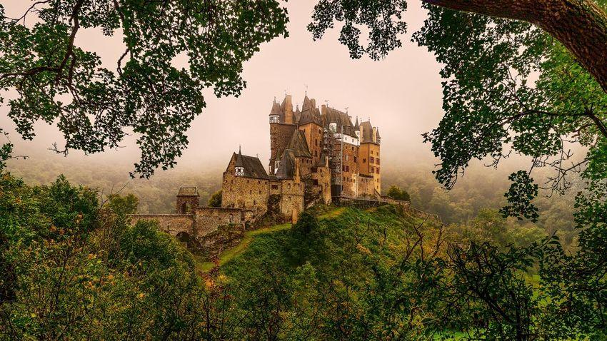 Eltz Castle Ancient Civilization Architecture Building Exterior Built Structure Castle Day Fog Growth Hazy  History Nature No People Outdoors Sky Travel Destinations Tree Burg Eltz