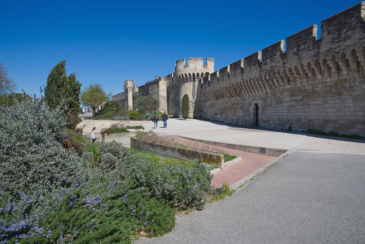 Old walls - Fortifications of Avignon - Camargue - Provence - France Avignon France Provence Wall Architecture Building Building Exterior Built Structure Camargue Clear Sky Day Fort Fortress History Nature Old Outdoors Plant Sky Street The Past Tower Travel Travel Destinations Tree