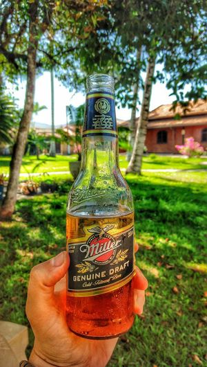 No People Day Close-up Outdoors Grass Tree Nature Freshness Beer Beer Time Beer Glass Miller Millertime Rio De Janeiro Eyeem Fotos Collection⛵ Rio De Janeiro Brasil Photos Official EyeEm © Rio De Janeiro