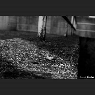 Photo Ph Photography Photographer Canon Canonitalia Canonphotography Canon_photo Canyousee Canonfanphoto Blogspot Blogger Senzacera Jenniferloggia Instaphoto 500px Canon_official Color Black &white Bn jenniferloggia.blogspot.it