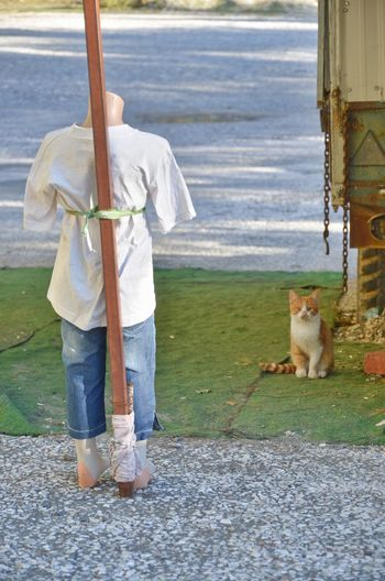 Full length of puppet with cat